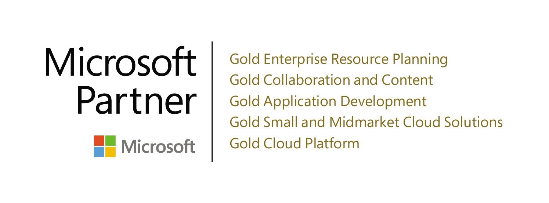 Microsoft Silver Partner - Enterprise Resource Planning