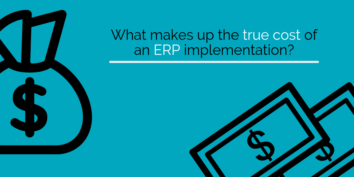 What makes up the true cost of an ERP implementation?